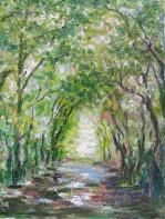 Tunel verde (Potteric Carr)